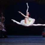 ABT Don Quixote, Vischneva, New York, 2005