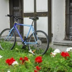 Colourful bicycle and geraniums, Gressoney, Italy, 2006